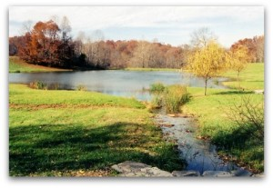 Pond built by Monomoy Services, Inc., farm excavation services, Fauquier County Virginia